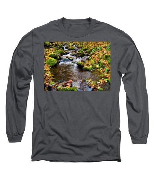 Fall Splendor Long Sleeve T-Shirt