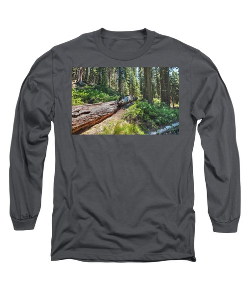 Fallen Tree- Long Sleeve T-Shirt