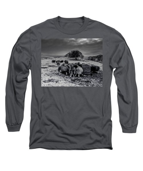 Long Sleeve T-Shirt featuring the photograph Feeding Time by Keith Elliott
