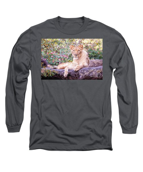 Female Lion Resting Long Sleeve T-Shirt by Stephanie Hayes