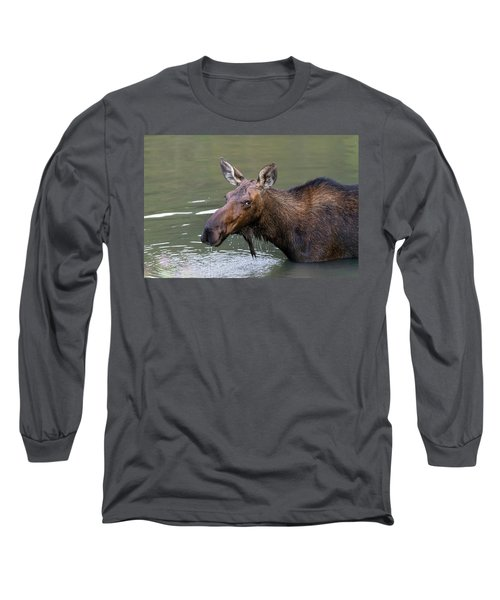 Long Sleeve T-Shirt featuring the photograph Female Moose Head by James BO Insogna