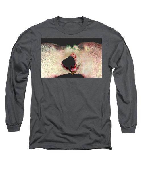 Fighting Bears Long Sleeve T-Shirt