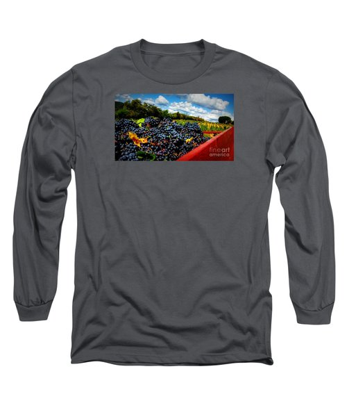 Filling The Red Wagon Long Sleeve T-Shirt by Lainie Wrightson