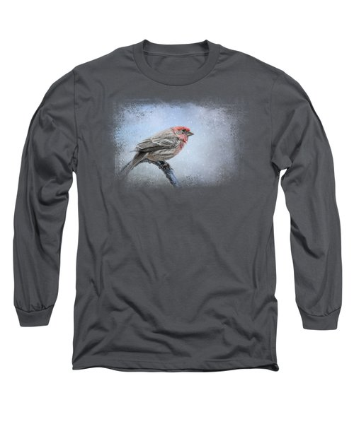 Finch In The Snow Long Sleeve T-Shirt by Jai Johnson