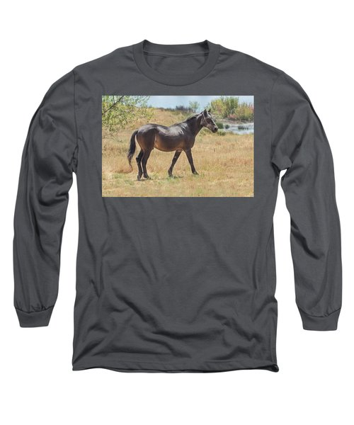 Finnon Lake Horse Long Sleeve T-Shirt