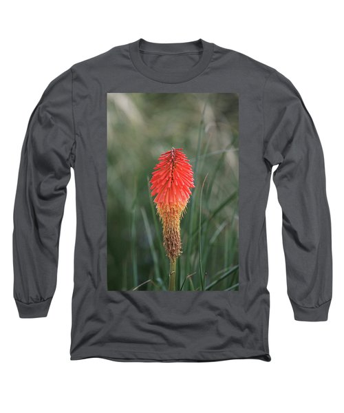 Firecracker Long Sleeve T-Shirt by David Chandler