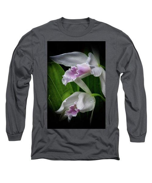 First Orchid At The Conservatory Of Flowers Long Sleeve T-Shirt