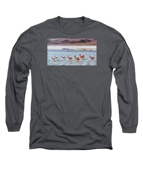 Flamingos Long Sleeve T-Shirt by Sandy Taylor