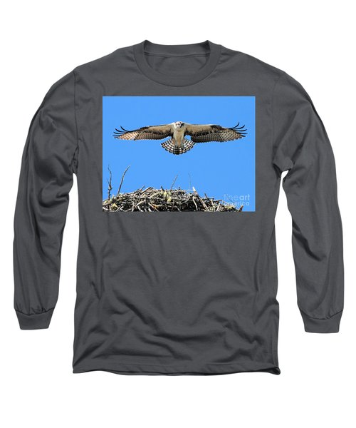 Long Sleeve T-Shirt featuring the photograph Flegeling Osprey by Debbie Stahre