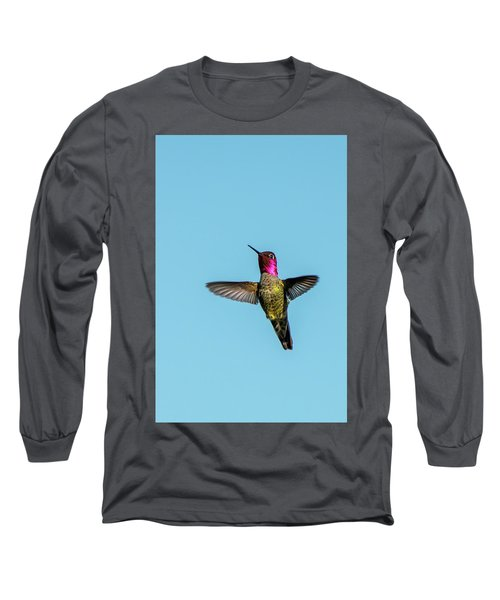 Flight Of A Hummingbird Long Sleeve T-Shirt