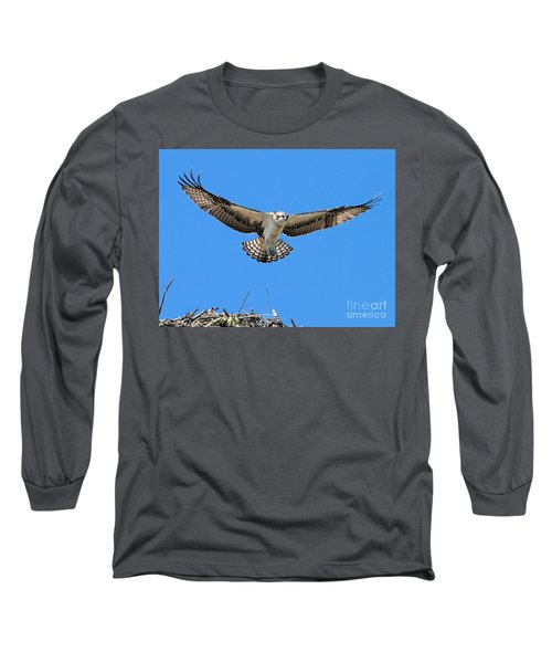 Long Sleeve T-Shirt featuring the photograph Flight Practice Over The Nest by Debbie Stahre