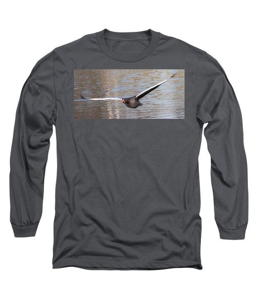 Flight Long Sleeve T-Shirt by Sergey Simanovsky