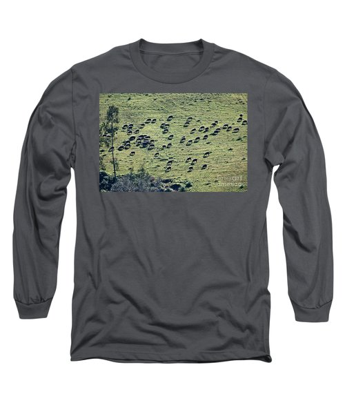 Long Sleeve T-Shirt featuring the photograph Flock Of Sheep by Bruno Spagnolo