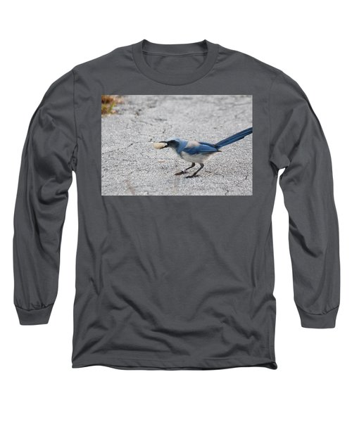 Florida Scrub Jay Long Sleeve T-Shirt