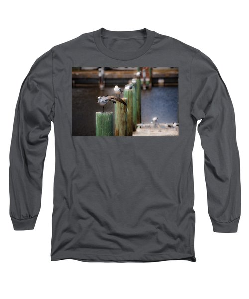 Florida Seagull Playing Long Sleeve T-Shirt