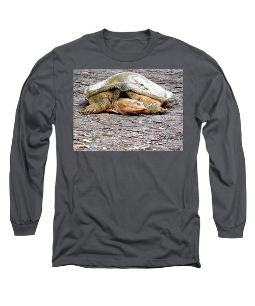 Long Sleeve T-Shirt featuring the photograph Florida Softshell Turtle 000 by Chris Mercer