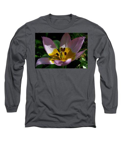 Flower Shadows Long Sleeve T-Shirt