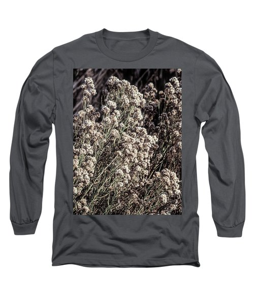 Fluff And Seeds Long Sleeve T-Shirt by John Brink