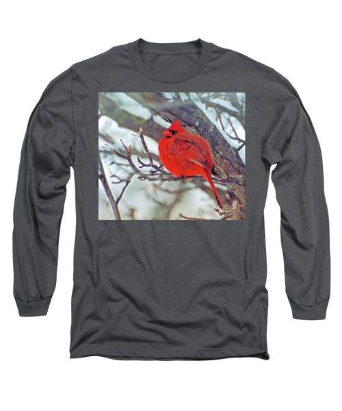 Fluffed Up Male Cardinal Long Sleeve T-Shirt