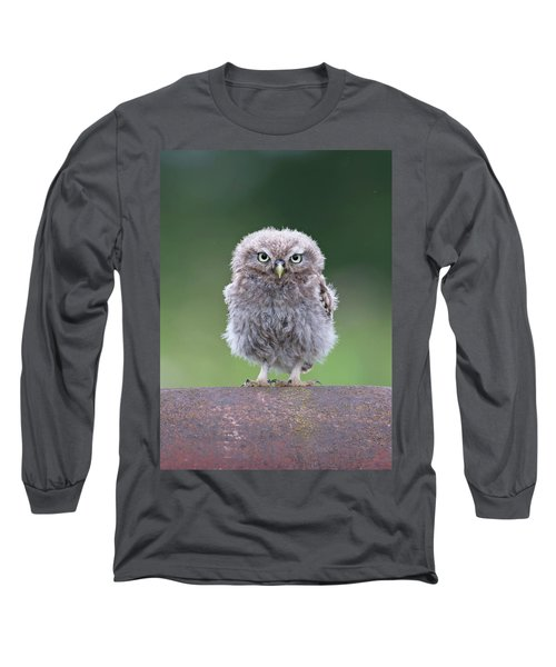 Fluffy Little Owl Owlet Long Sleeve T-Shirt