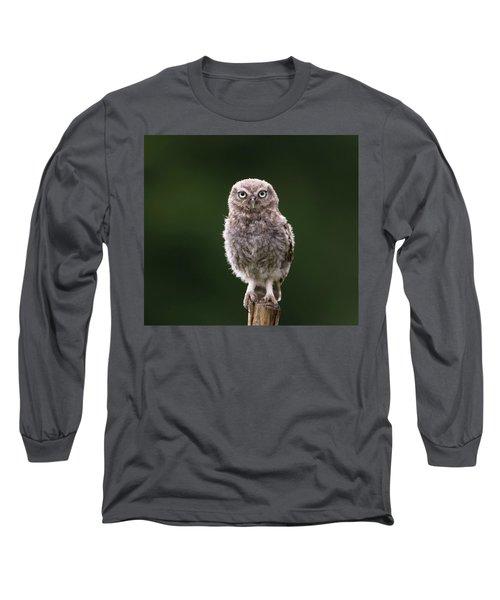 Fluffy Mcfluff-face Long Sleeve T-Shirt