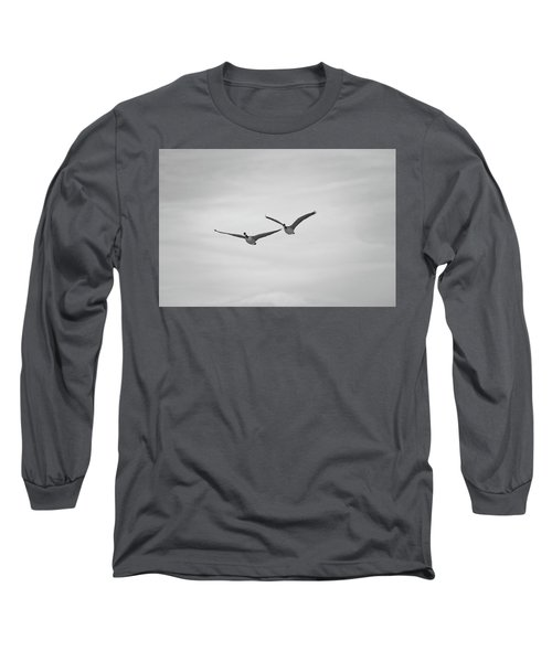Flying Companions Long Sleeve T-Shirt by Jason Coward