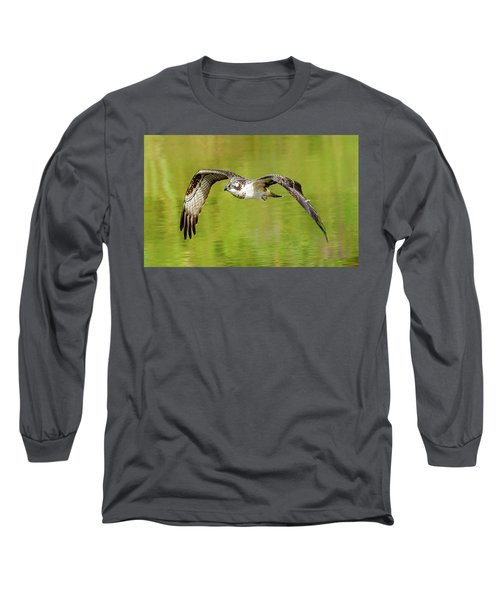 Flying Osprey Long Sleeve T-Shirt by Jerry Cahill
