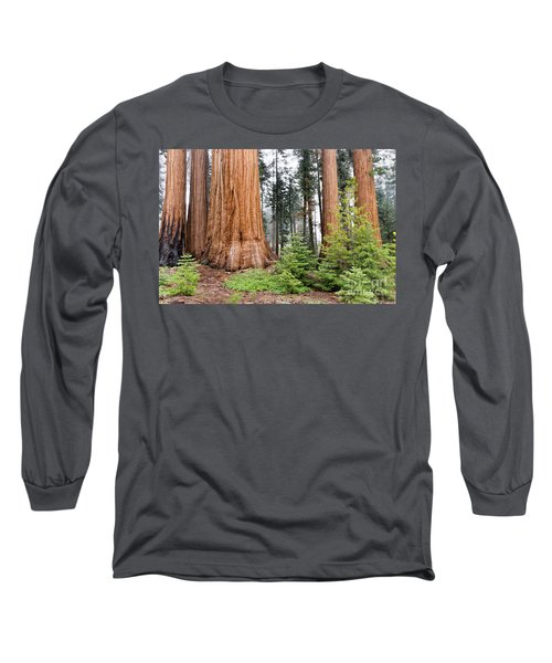 Long Sleeve T-Shirt featuring the photograph Forest Growth by Peggy Hughes