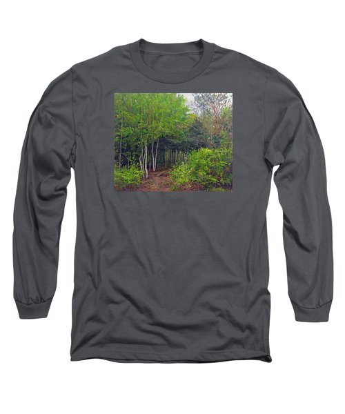 Forest Path Leading Into The Forest Long Sleeve T-Shirt