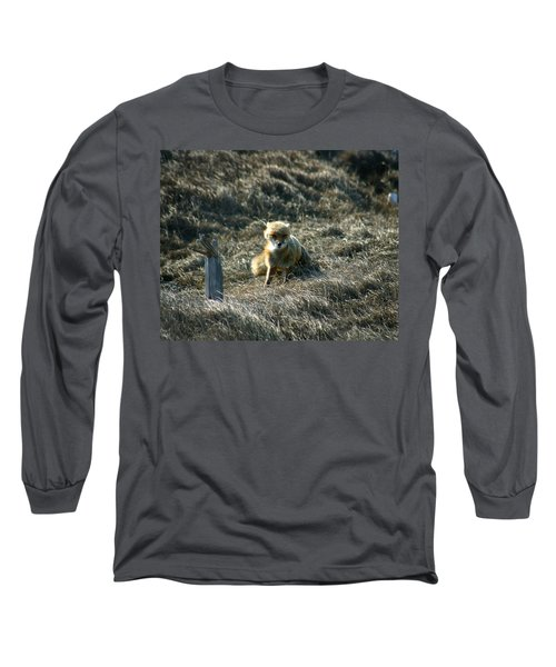 Fox In The Wind Long Sleeve T-Shirt