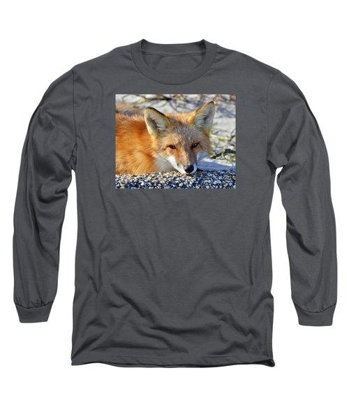 Fox Posing For Me Long Sleeve T-Shirt
