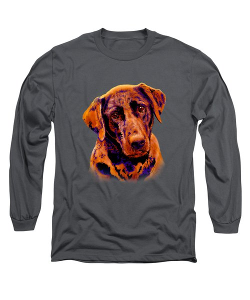 Fox Red Labrador Painting II Long Sleeve T-Shirt