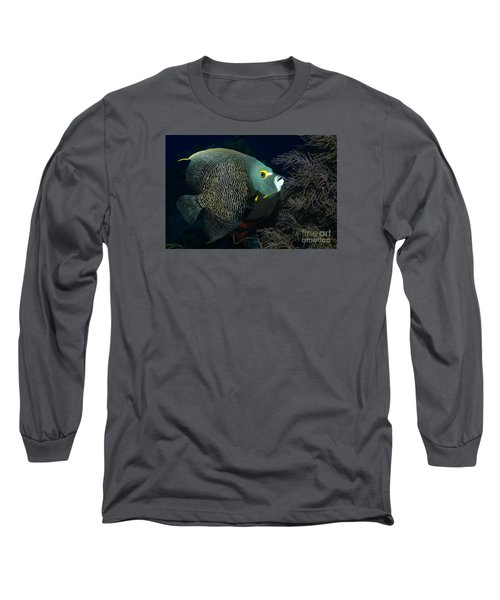 French Angel Long Sleeve T-Shirt by Aaron Whittemore