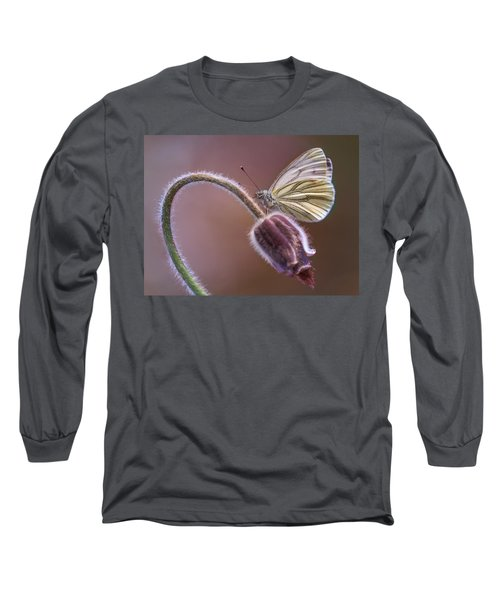 Fresh Pasque Flower And White Butterfly Long Sleeve T-Shirt by Jaroslaw Blaminsky