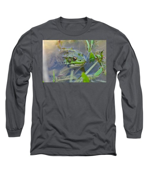 Frog Hiding In The Pond Long Sleeve T-Shirt by Lisa DiFruscio