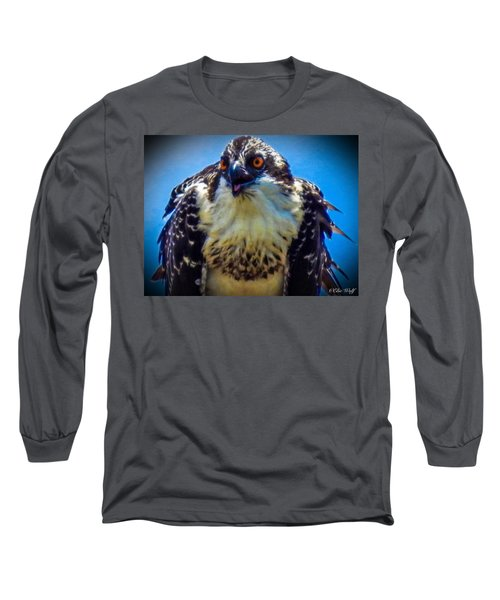 From The Series The Osprey Number 3 Long Sleeve T-Shirt