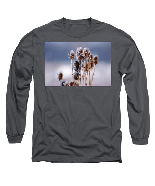 Frost In The Morning Long Sleeve T-Shirt