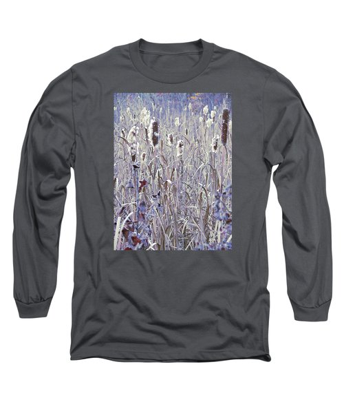 Frosted Cattails In The Morning Light Long Sleeve T-Shirt by Joy Nichols