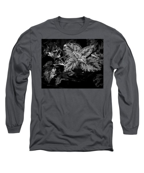 Frosted Hosta Long Sleeve T-Shirt