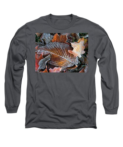 Frosted Painted Leaves Long Sleeve T-Shirt by Shari Jardina