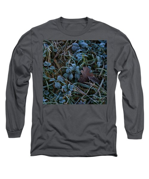 Frostings 4 Long Sleeve T-Shirt