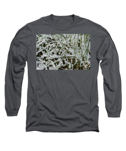 Frosty Grass Long Sleeve T-Shirt by Deborah Smolinske