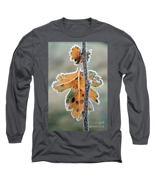 Frosty Leaf Long Sleeve T-Shirt