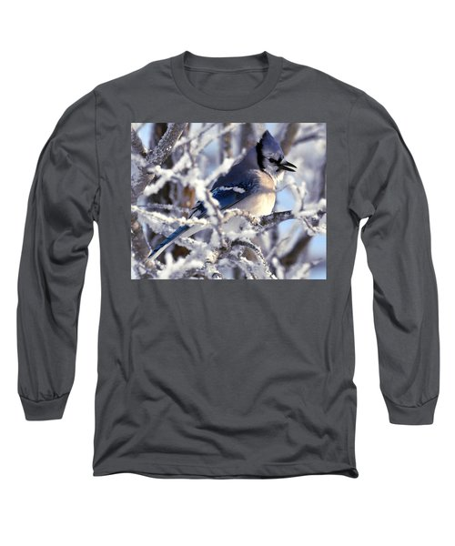 Frosty Morning Blue Jay Long Sleeve T-Shirt