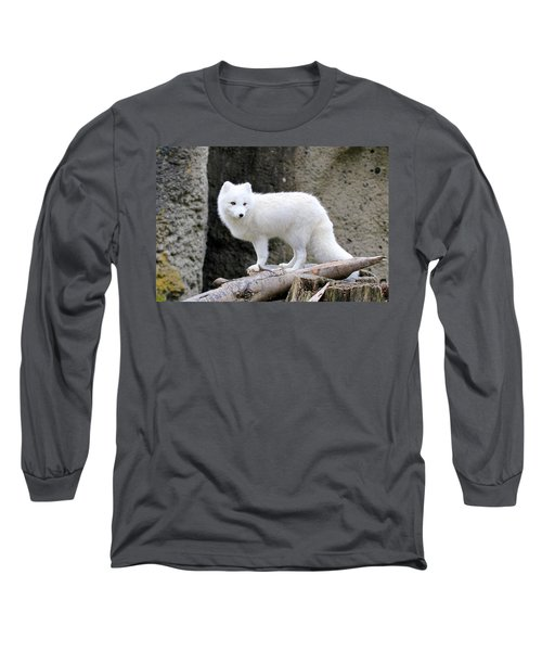 Furry Arctic Fox  Long Sleeve T-Shirt by Athena Mckinzie