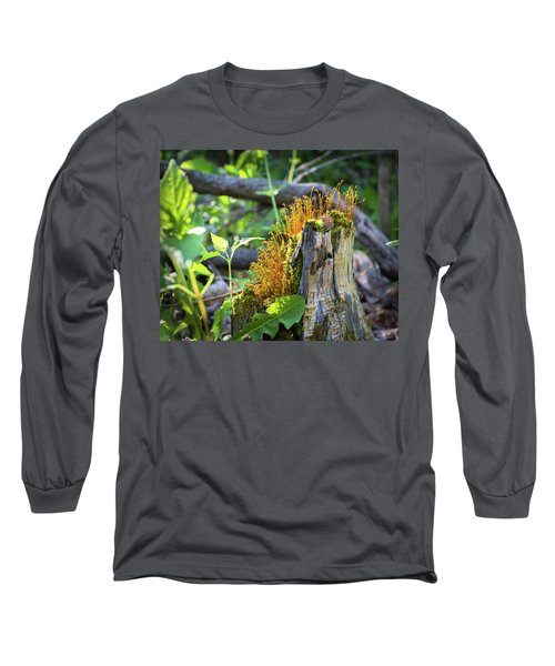 Long Sleeve T-Shirt featuring the photograph Fuzzy Stump by Bill Pevlor