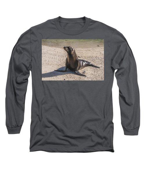 Galapagos Sea Lion Long Sleeve T-Shirt