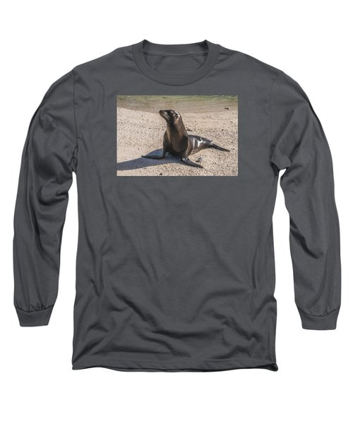 Galapagos Sea Lion Long Sleeve T-Shirt