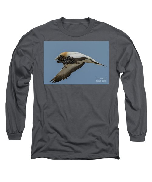 Long Sleeve T-Shirt featuring the photograph Gannets 1 by Werner Padarin