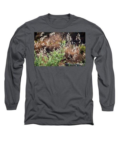 Garden Contre Jour 2 Long Sleeve T-Shirt
